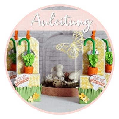 Karottenbox-Anleitung-Stampin Up-Stempelzimmer-Blog-Österreich