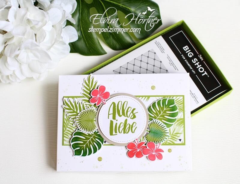 Prägefolder Stampin Up-Set Tropenflair-Tropical Chic-Verpackung-Geschenk-Stempelzimmer