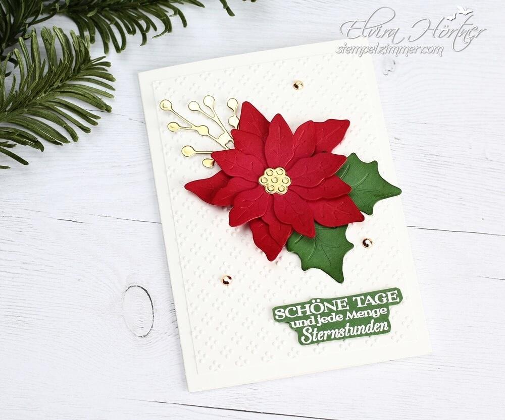 Bluehende Weihnachten-Produktpaket von Stampin' Up! - Weihnachtsstern-Poinsettia